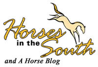 Horses in the South