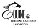 equine-lab-colorado